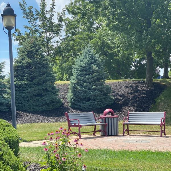 Benches in a Park
